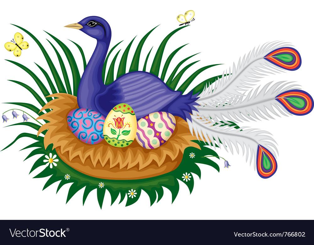 Bird sitting on a nest vector   Price: 3 Credit (USD $3)