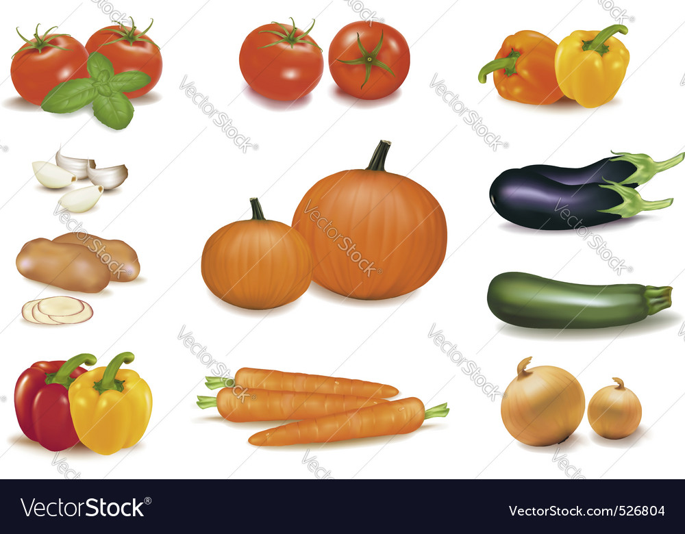 Group of vegetables with pumpkins vector | Price: 3 Credit (USD $3)