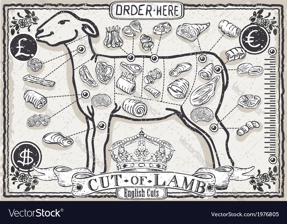 Cut of lamb on vintage page vector | Price: 1 Credit (USD $1)