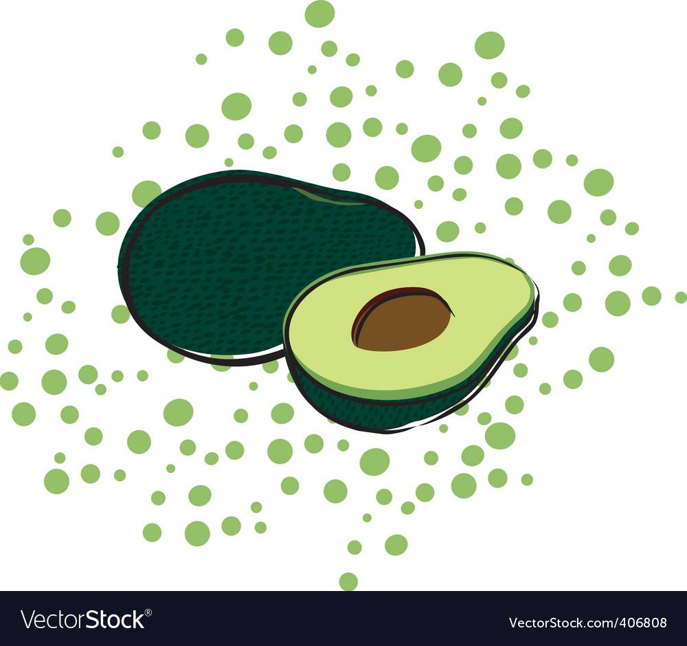 Avocado vector | Price: 1 Credit (USD $1)