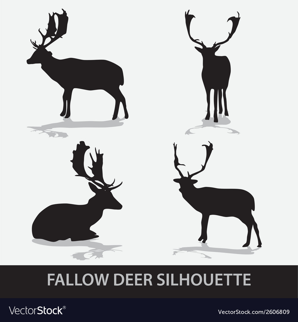 Fallow deer silhouette icons eps10 vector | Price: 1 Credit (USD $1)