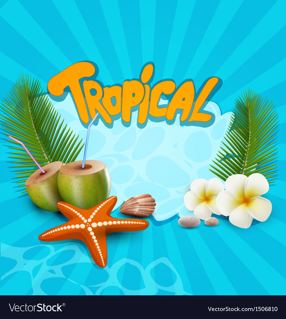 Tropical banner with seashells starfish vector | Price: 1 Credit (USD $1)
