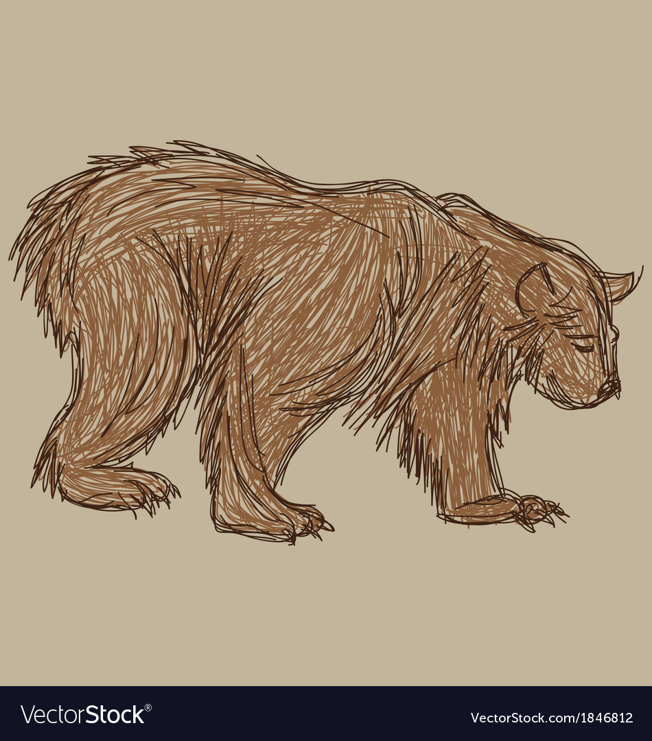 Bear sketch vector | Price: 1 Credit (USD $1)