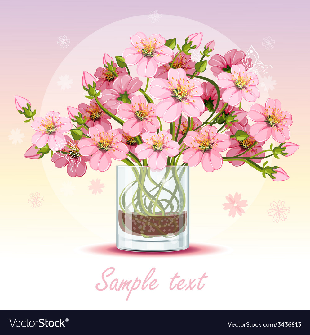 Background with cherry blossom in a glass vector | Price: 3 Credit (USD $3)