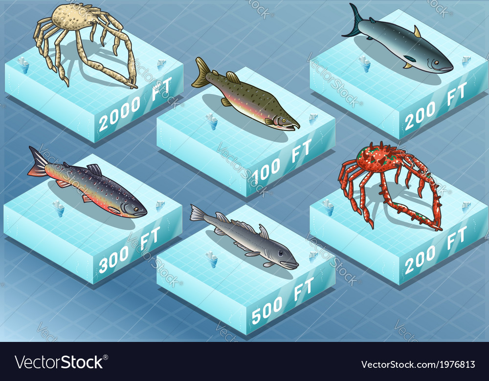 Isometric fishes on the sea vector | Price: 1 Credit (USD $1)