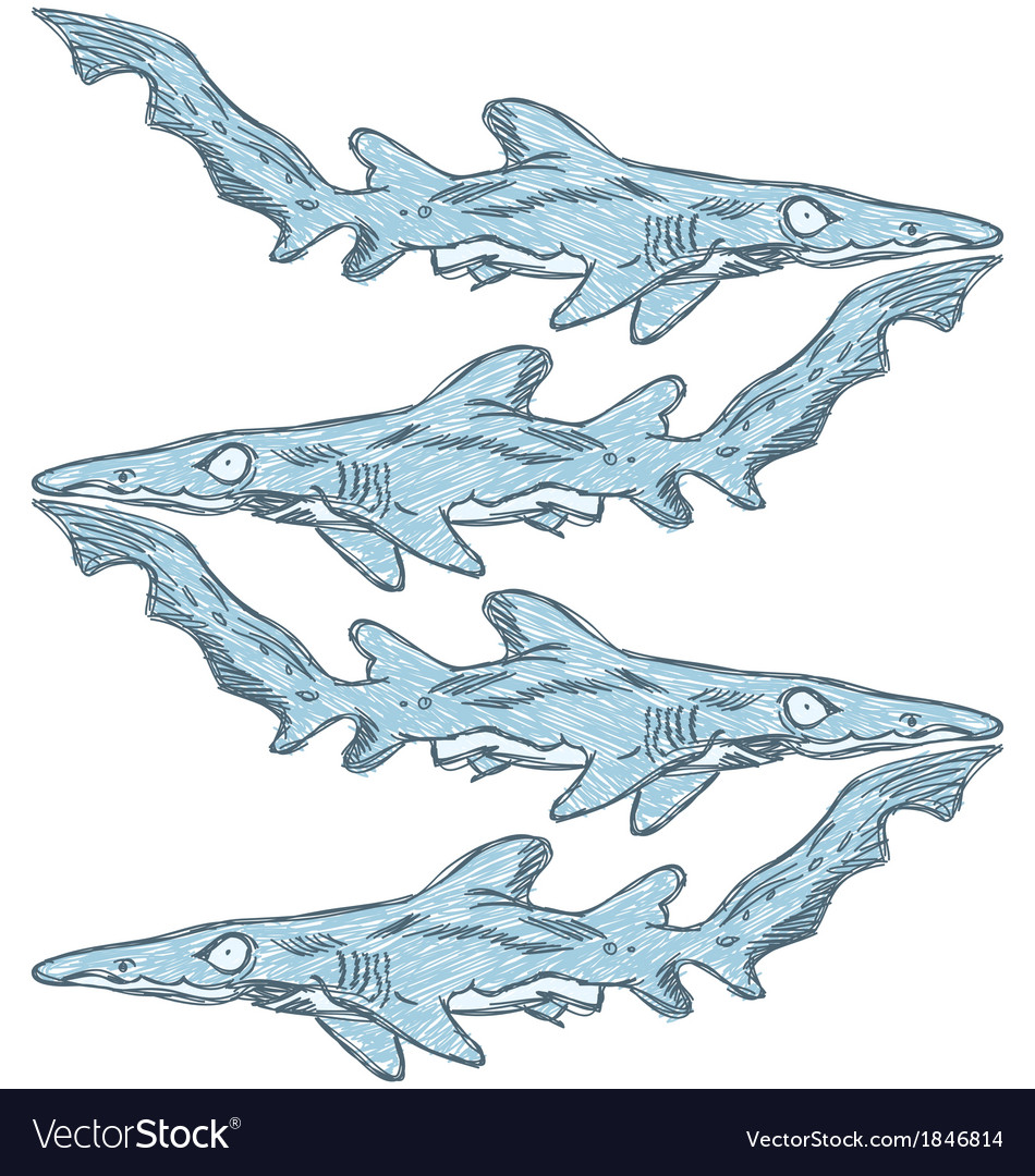 Sketch shark vector | Price: 1 Credit (USD $1)