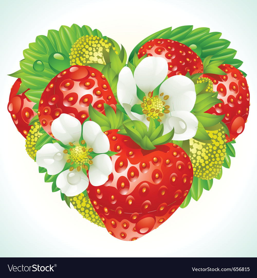 Strawberries in the shape of heart vector | Price: 3 Credit (USD $3)
