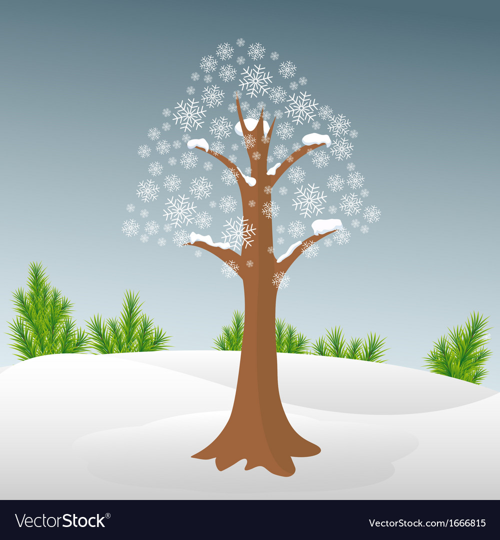 Winter tree in snow vector | Price: 1 Credit (USD $1)