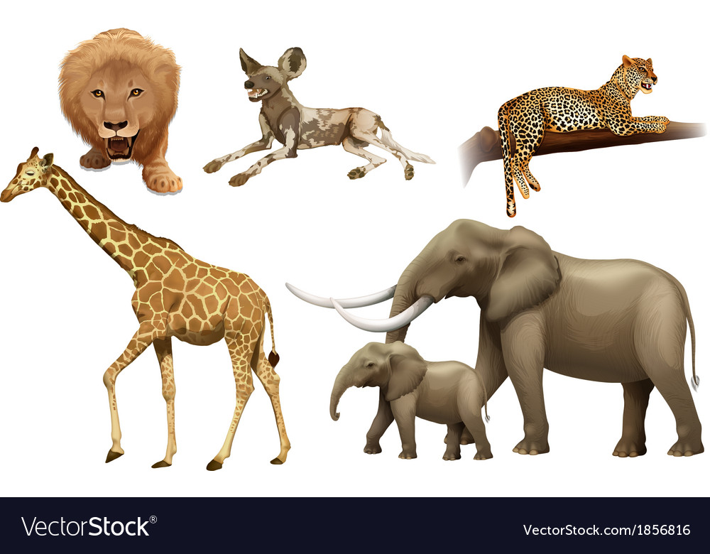 African animals vector | Price: 1 Credit (USD $1)