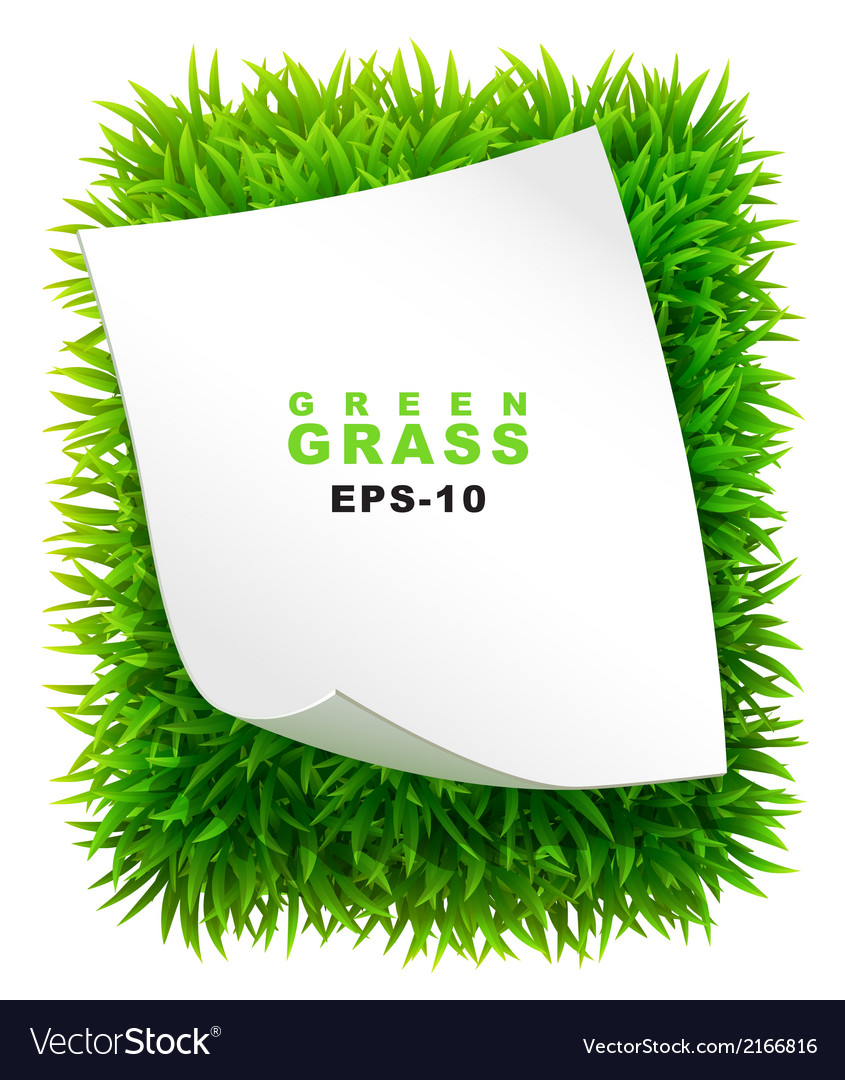 Grassy rectangle with a clean sheet of paper vector | Price: 1 Credit (USD $1)