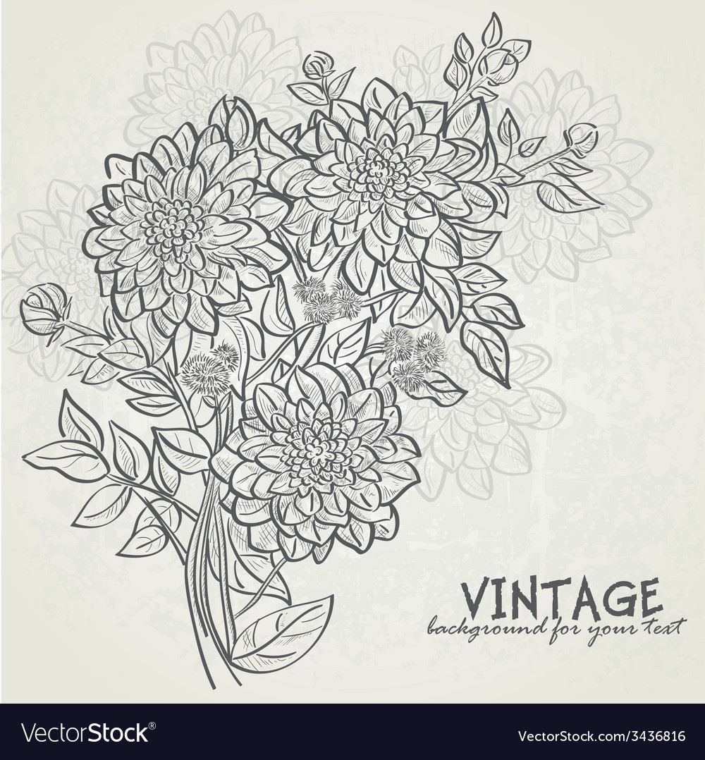 Vintage background with flowers dahlias vector | Price: 1 Credit (USD $1)