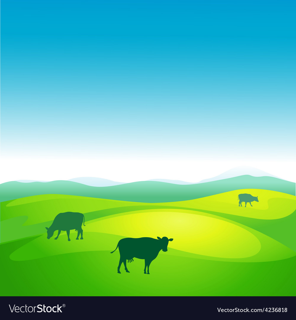 Cow grazes in a meadow - vector   Price: 1 Credit (USD $1)
