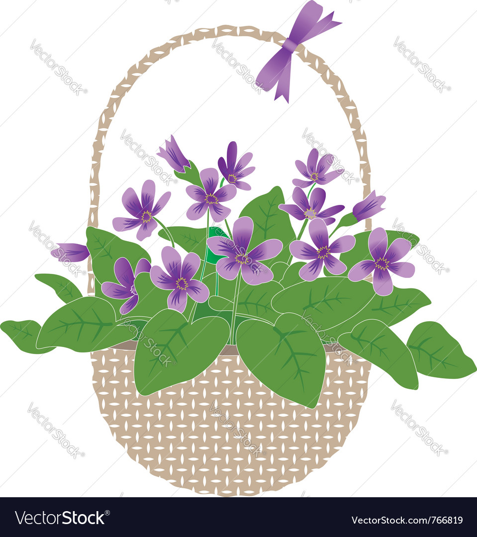 Violets in basket vector | Price: 1 Credit (USD $1)