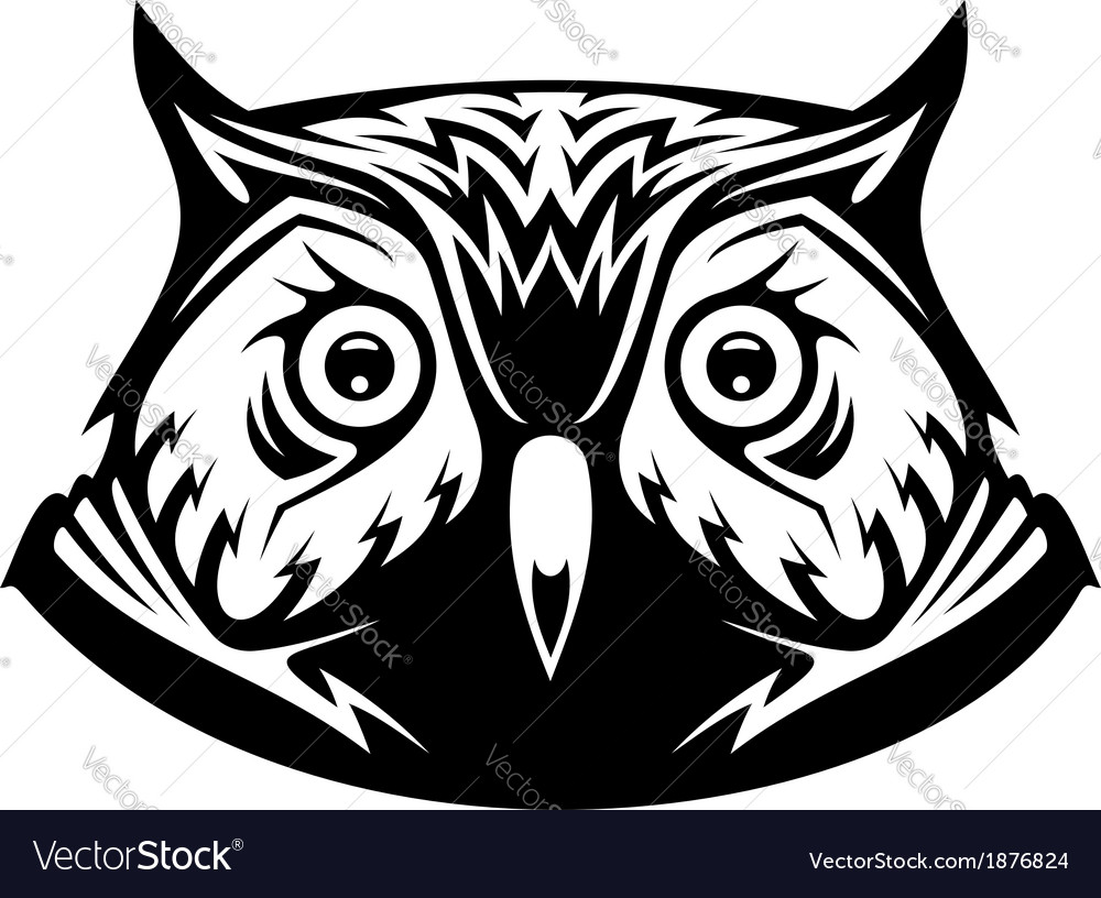Wise old owl vector | Price: 1 Credit (USD $1)