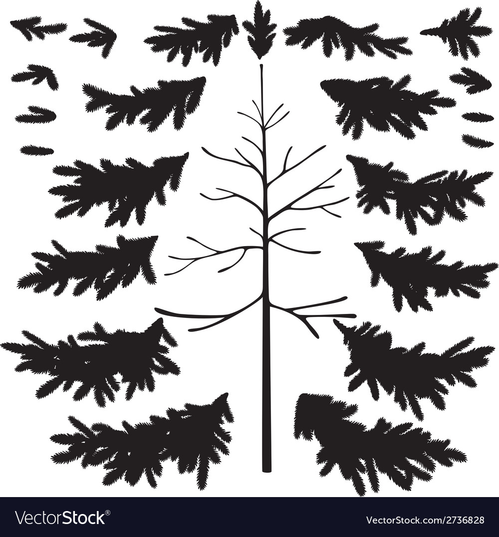 Christmas tree trunk and branches silhouettes vector | Price: 1 Credit (USD $1)