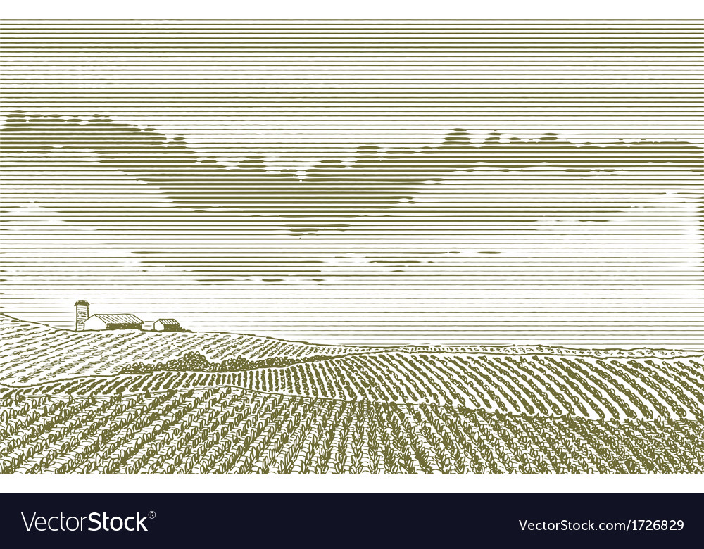 Farm field drawing vector | Price: 1 Credit (USD $1)