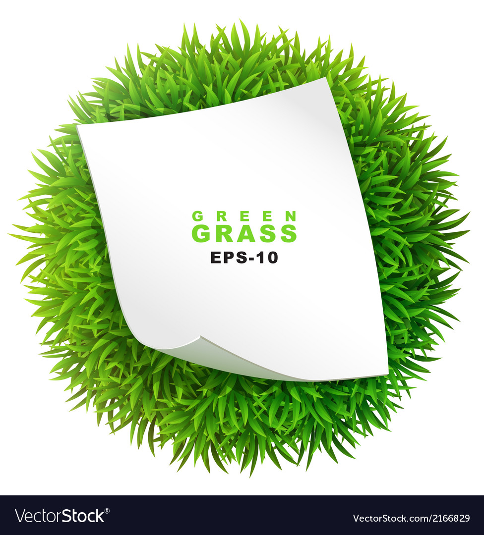 Grassy sphere with a clean sheet of paper vector | Price: 1 Credit (USD $1)