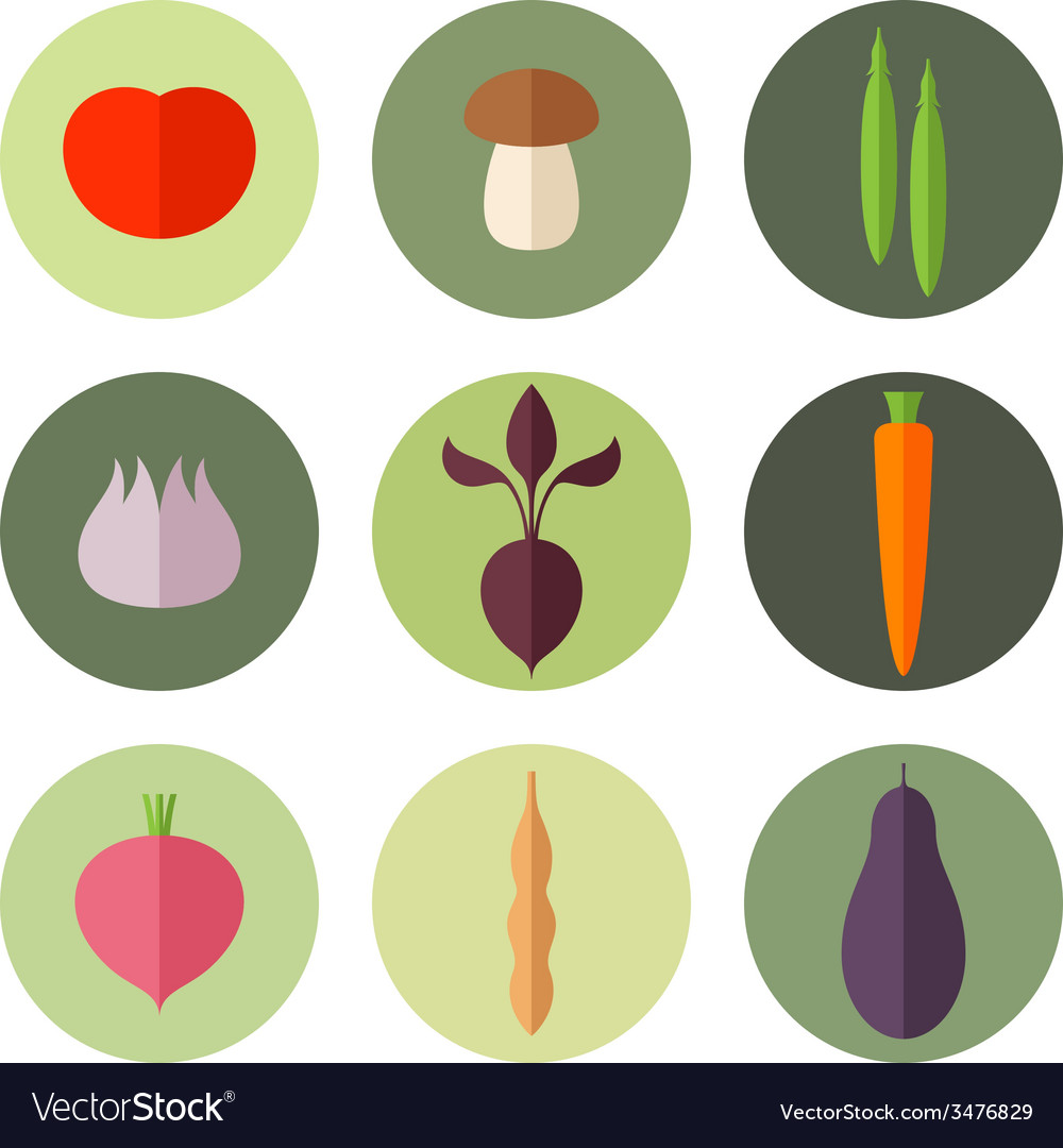 Vegetable icon set vector | Price: 1 Credit (USD $1)
