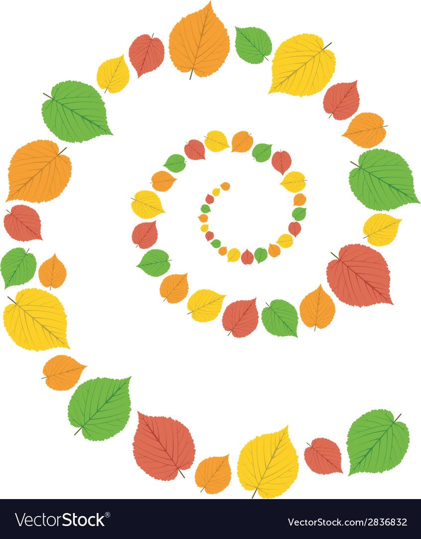 Pattern from autumn leaves vector | Price: 1 Credit (USD $1)