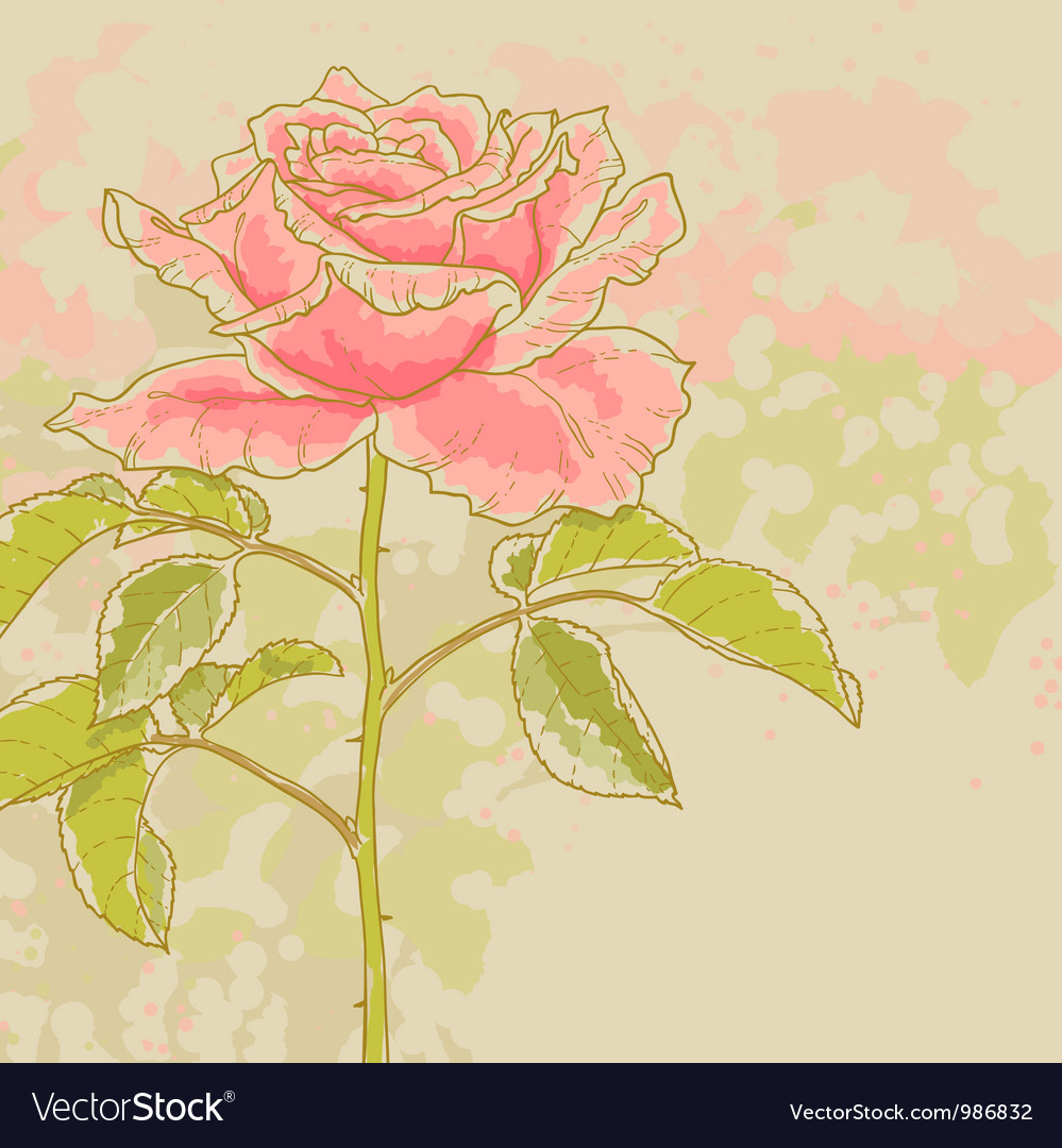 Pink rose on toned background vector | Price: 1 Credit (USD $1)