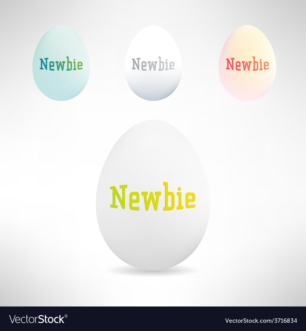 Realistic egg with newbie text on it vector | Price: 1 Credit (USD $1)