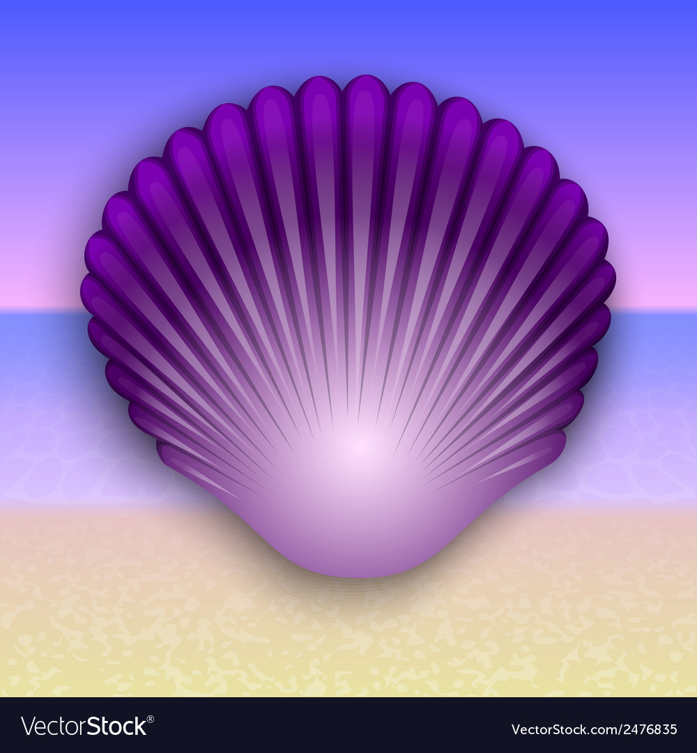 Purple shell on the summer sea beach vector | Price: 1 Credit (USD $1)