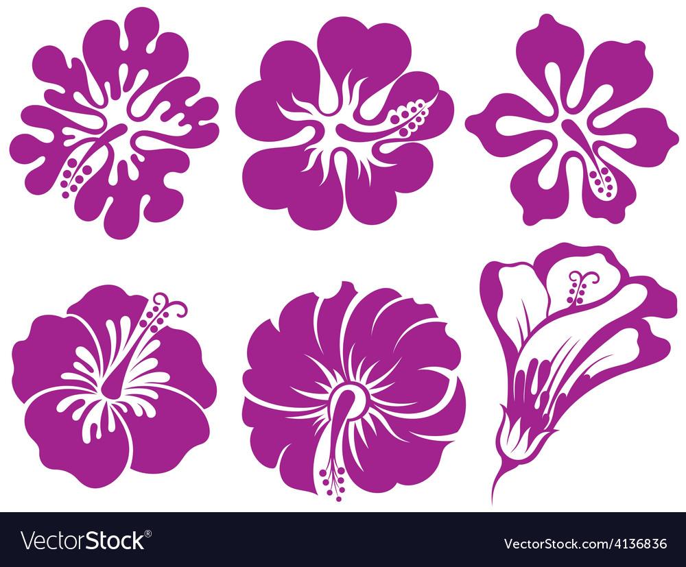 Hibiscus silhouettes set vector | Price: 1 Credit (USD $1)