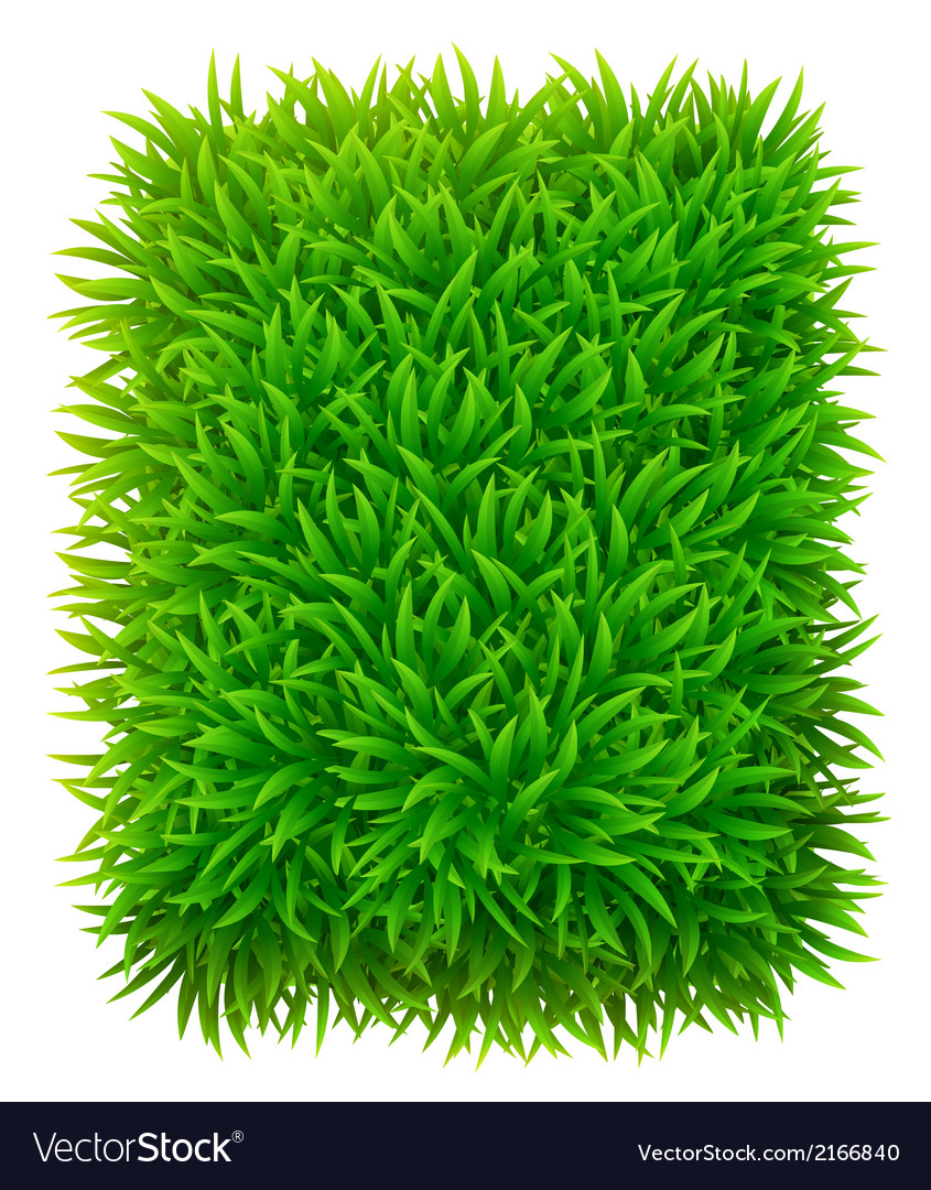 Grassy rectangle vector | Price: 1 Credit (USD $1)