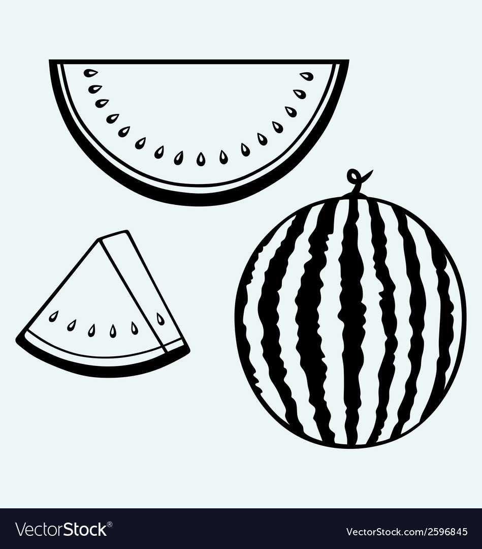 Whole and slices of watermelon vector | Price: 1 Credit (USD $1)