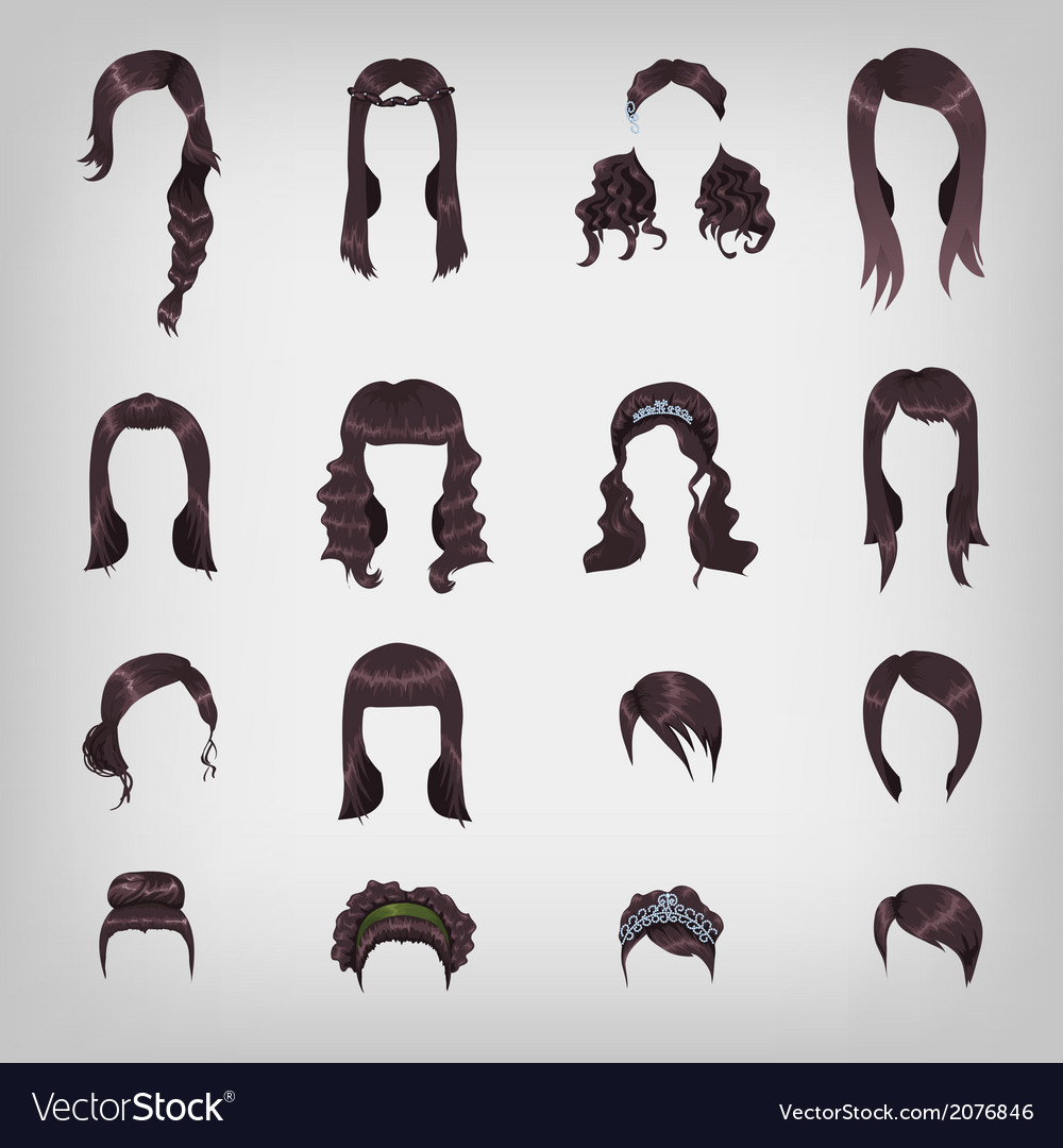 Assortment of female brunette hair vector | Price: 1 Credit (USD $1)