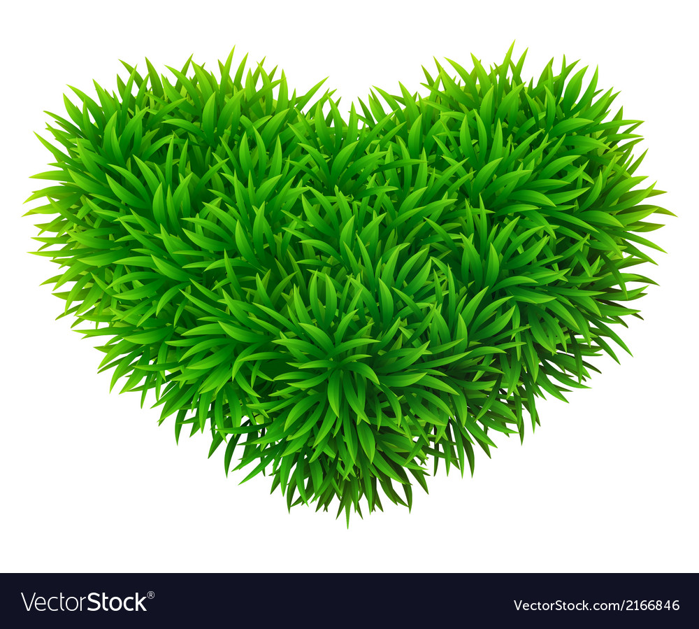 Grassy heart vector | Price: 1 Credit (USD $1)