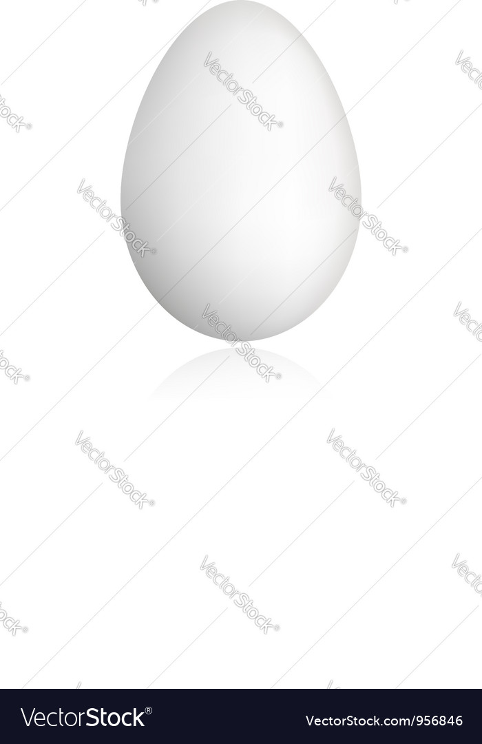 White egg for your design vector | Price: 1 Credit (USD $1)