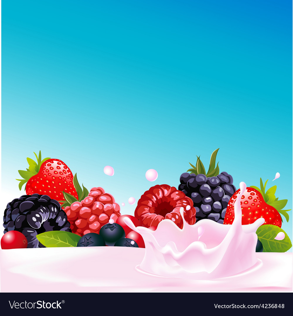 Forest fruit with yogurt splash - vector | Price: 1 Credit (USD $1)