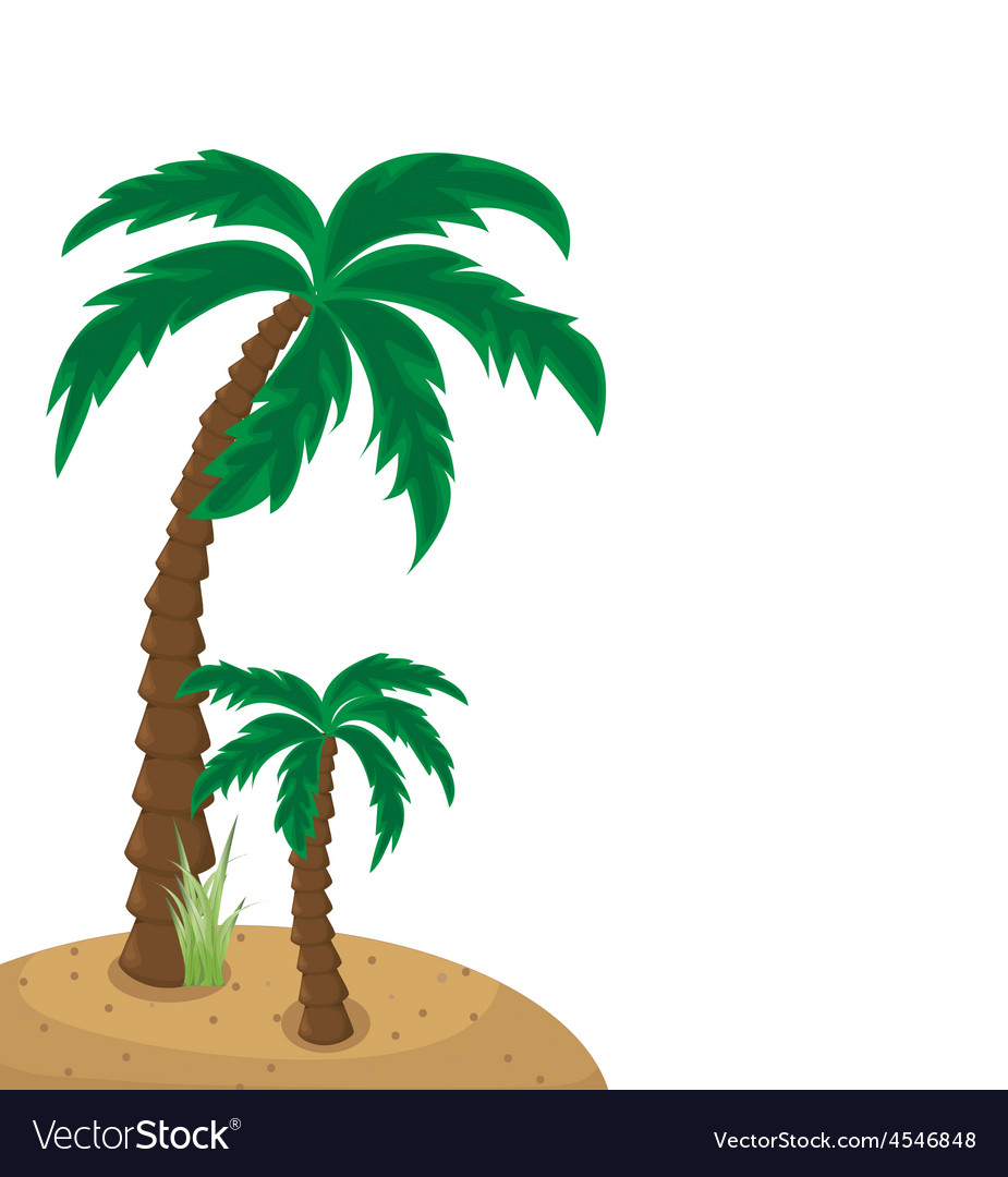 Palm trees vector   Price: 1 Credit (USD $1)