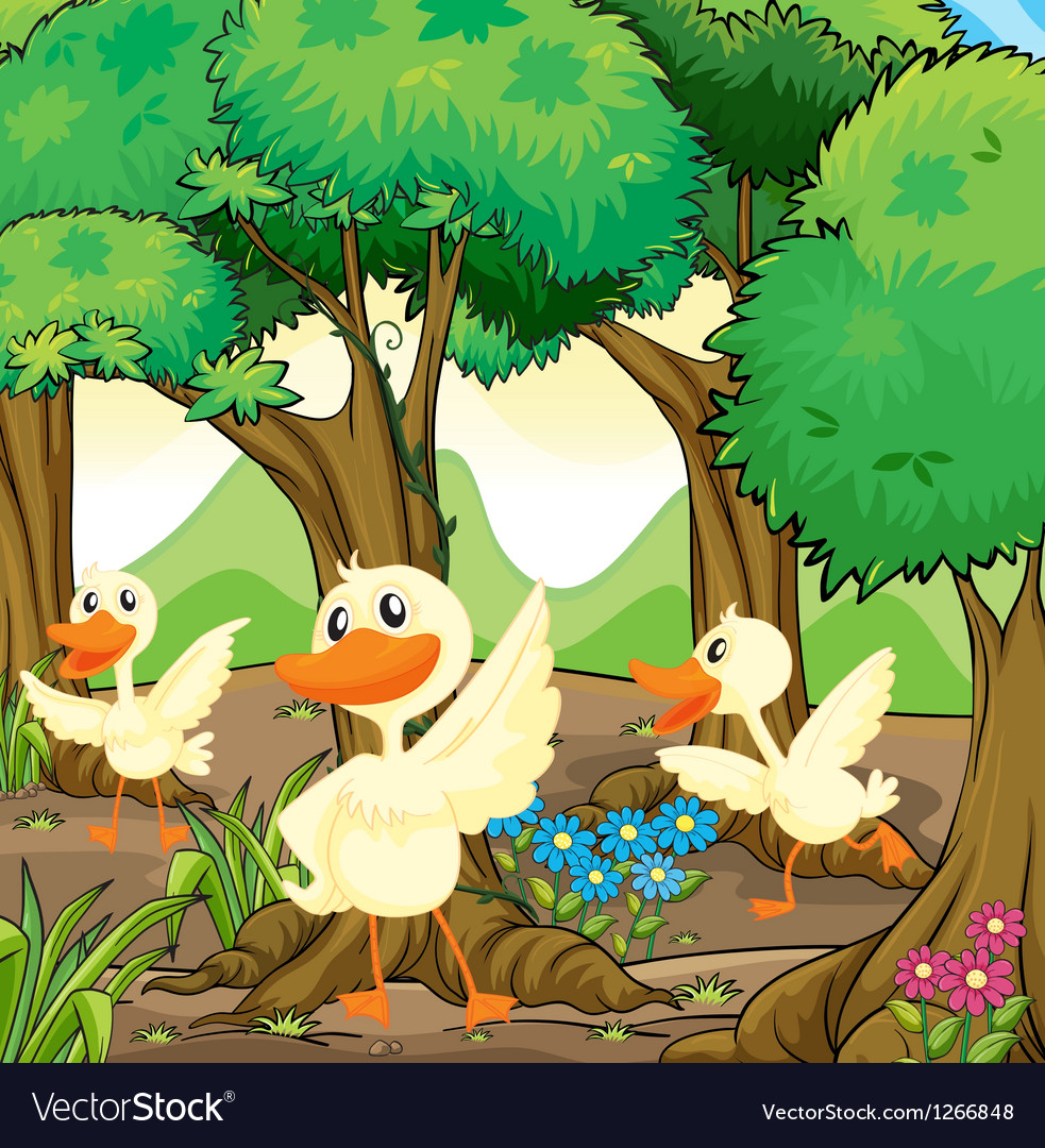 Three white ducks in the middle of the woods vector | Price: 1 Credit (USD $1)