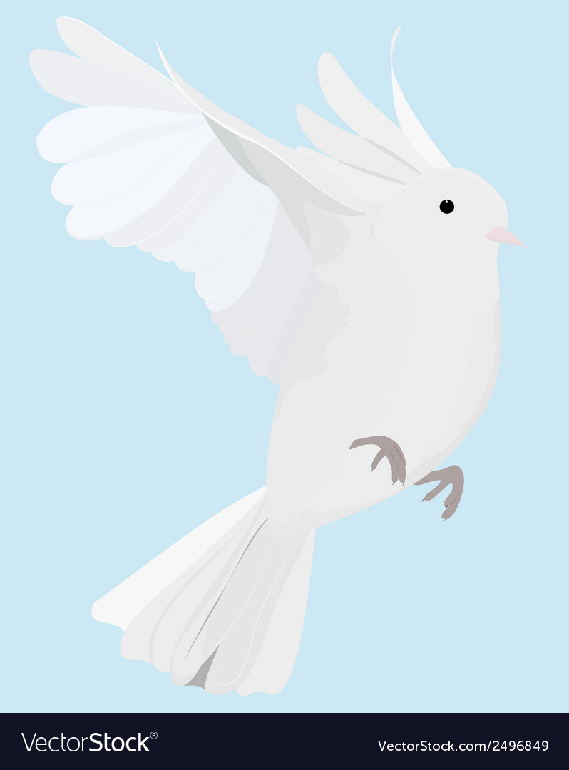 Dove on fly vector | Price: 1 Credit (USD $1)