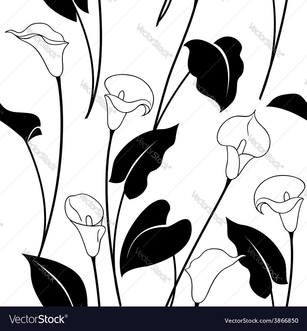 Calla pattern black vector | Price: 1 Credit (USD $1)