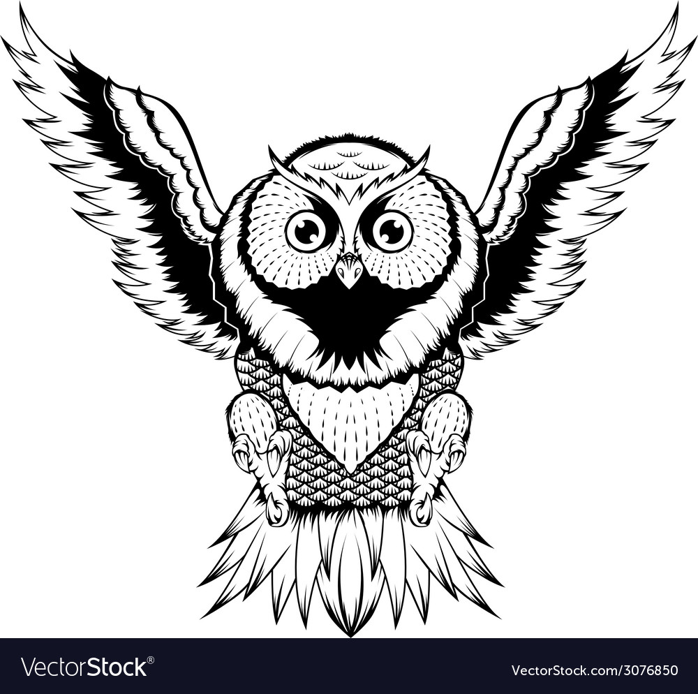 Owl fly vector | Price: 1 Credit (USD $1)