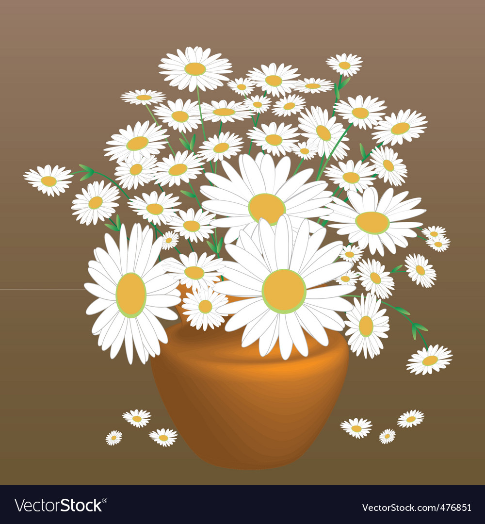 A beautiful bouquet of daisies vector | Price: 1 Credit (USD $1)