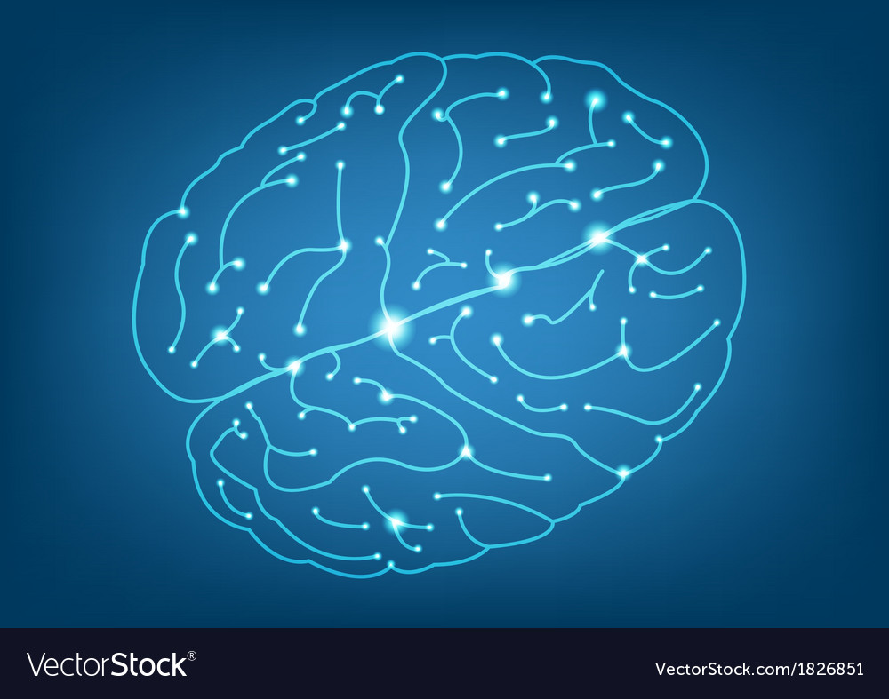 Abstract left and right brain function vector | Price: 1 Credit (USD $1)