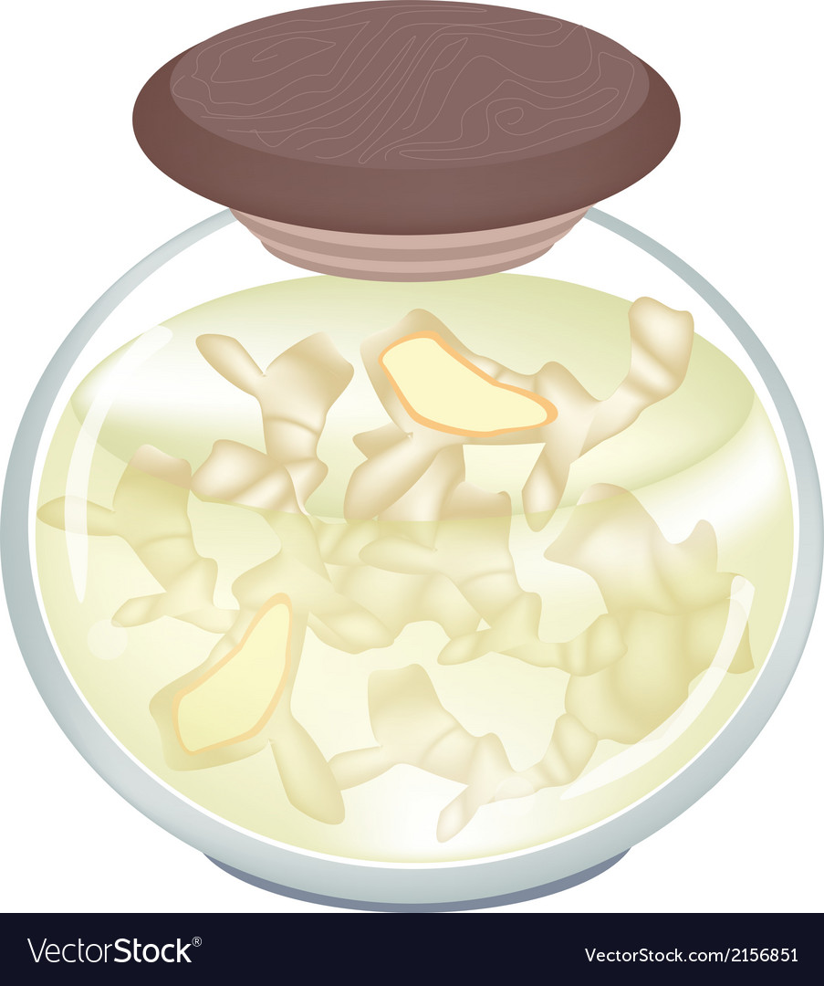 Pickled gingers in a jar on white background vector | Price: 1 Credit (USD $1)