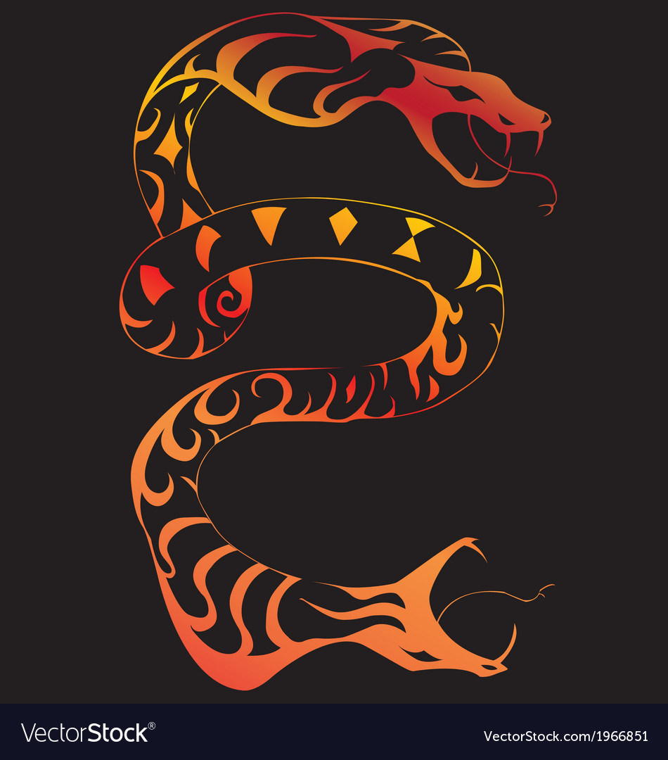 Two headed snake vector | Price: 1 Credit (USD $1)