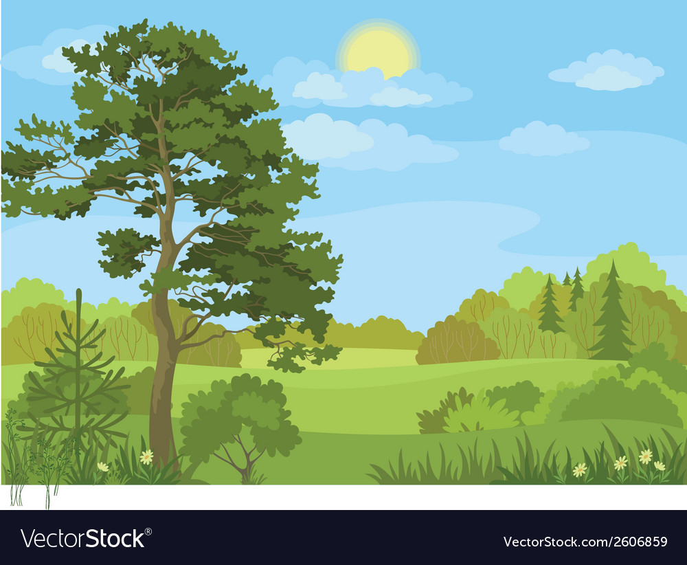 Summer landscape with trees and sky vector | Price: 1 Credit (USD $1)