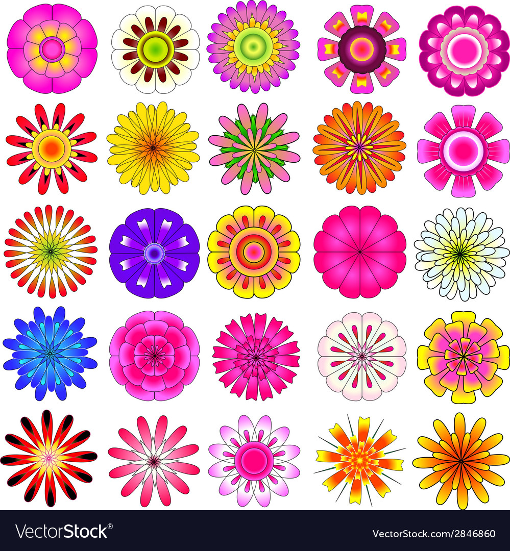Colorful flower vector | Price: 1 Credit (USD $1)