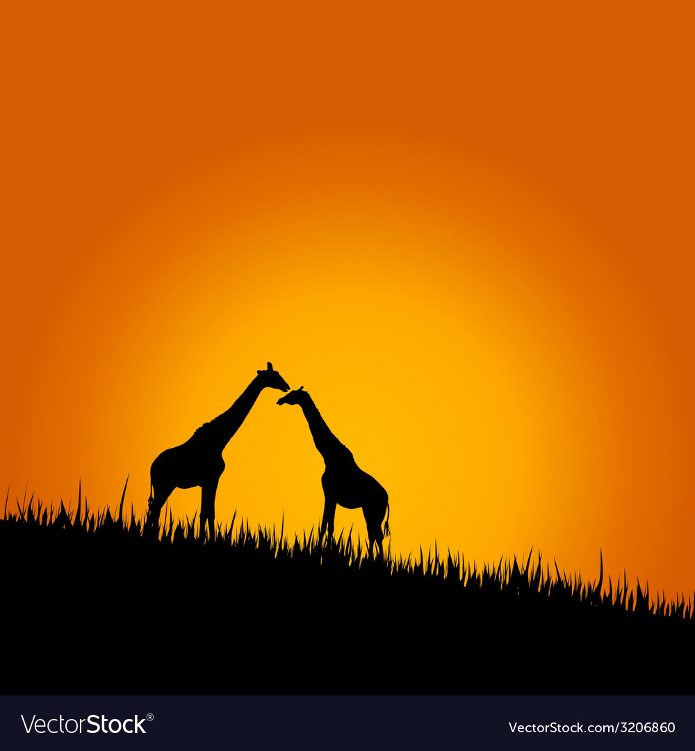 Giraffe in wilderness color vector | Price: 1 Credit (USD $1)