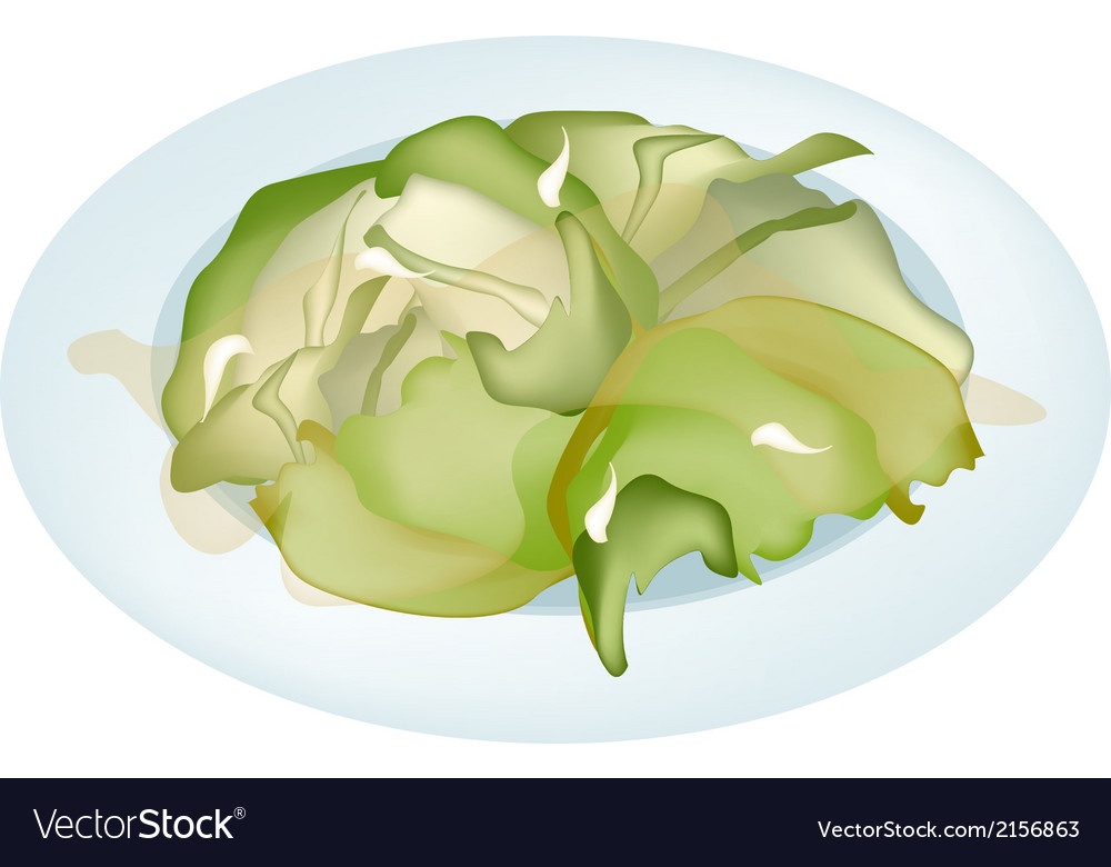 Stir fried cabbages on a white plate vector | Price: 1 Credit (USD $1)