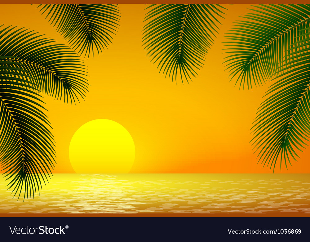 Sunset sea and palm branch vector | Price: 1 Credit (USD $1)