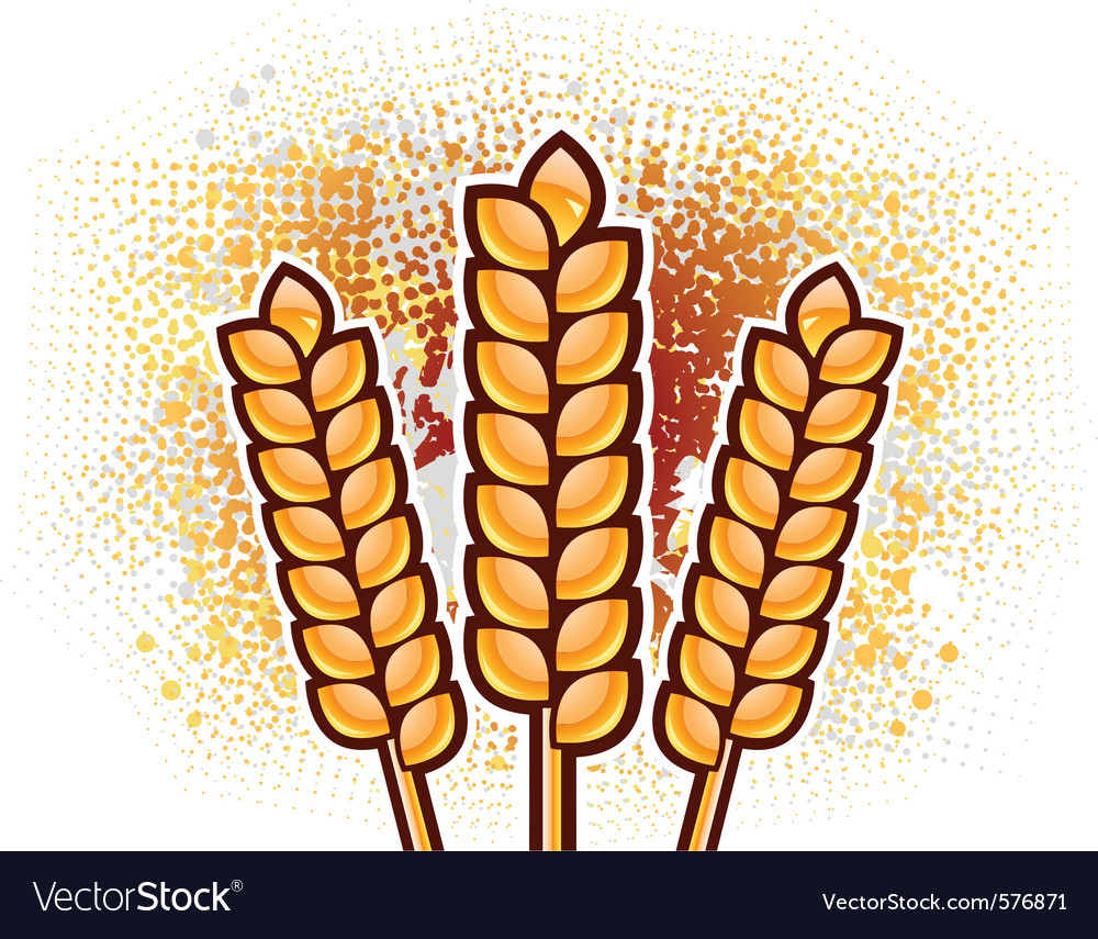 Gold corn on the background vector | Price: 1 Credit (USD $1)