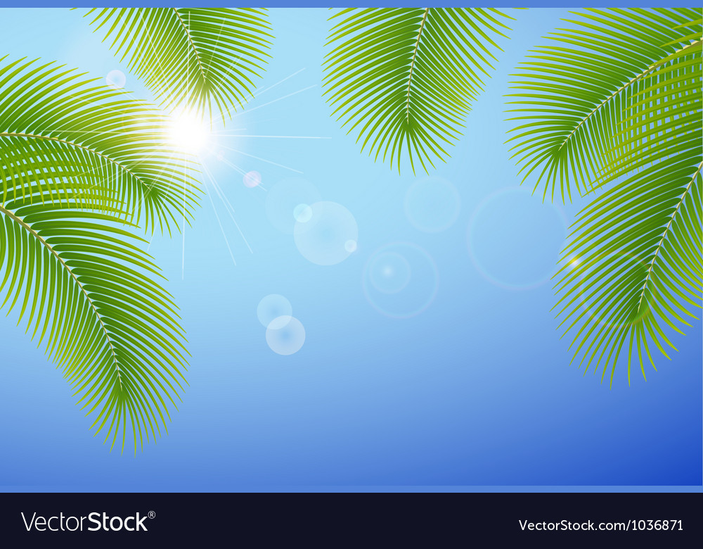Sunny blue sky and palm branches vector | Price: 1 Credit (USD $1)