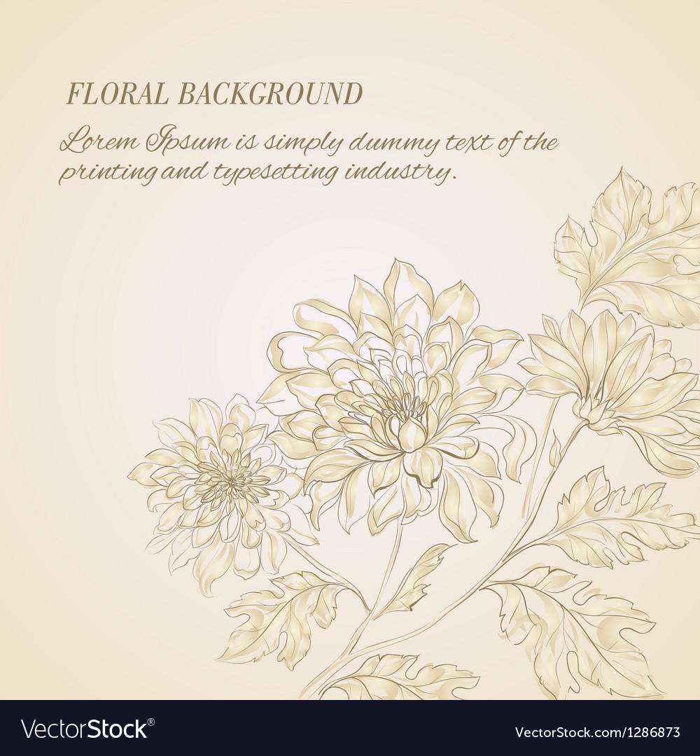 Branch of chrysanthemum vector | Price: 1 Credit (USD $1)